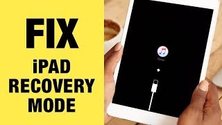 Fix iPad Stuck in Recovery Mode in iOS 12. FREE. 1 Click Only