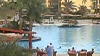 Вид из номера отеля Desert Rose 5*