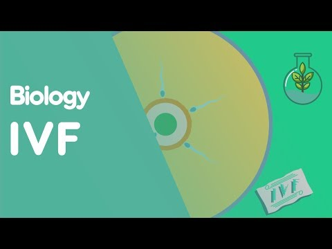 ivf-|-biology-for-all-|-fuseschool