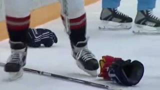 Sergei Fedorov KHL fight
