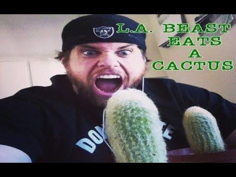 L.A. BEAST EATS A CACTUS