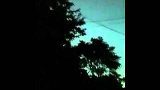 ウォルピスカーター - 夕刻リビドー