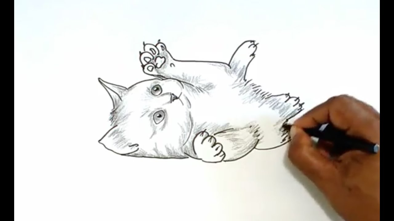 Uncategorized Drawing Of Kitten how to draw a kitten youtube