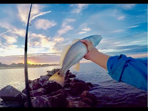 Drum, Flounder & Trout Caught In 15min! Epic JETTY FISHING In Virginia Beach, VA