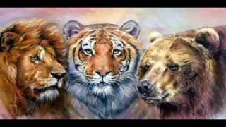 Gambar cover Eye of the tiger, Tribute to the greatest predator on earth the tiger.