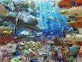 Ocean Wonders Encountering sea monsters HD 1080p