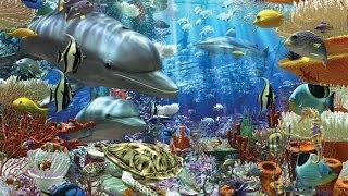 Ocean Wonders Encountering sea monsters HD 1080p