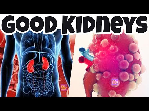 Good Ways to CLEANSE Your KIDNEY & Improve Its Functions - Naturally Flush & Cleanse Your Kidneys