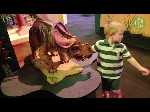 Impression 5 Science Museum's Amazing Dinosaur Exhibit- Super Fun