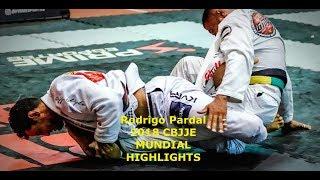 Rodrigo Pardal - CBJJE 2018 Mundial Highlight [HELLO JAPAN]