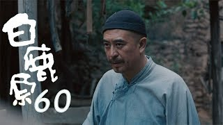 白鹿原 | White Deer 60【DVD版】(張嘉譯、秦海璐、何冰等主演)