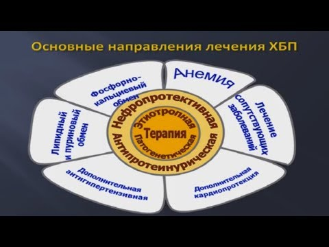 Хроническая болезнь почек (ХБП): принципы профилактики и нефропротективной терапии © kidney disease