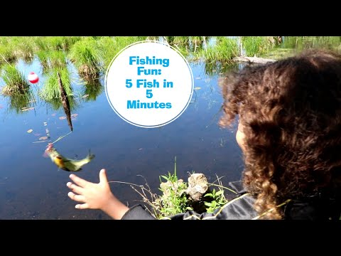 Fishing With Kids Video For Kids. Play 22 Fishing Kit Review.