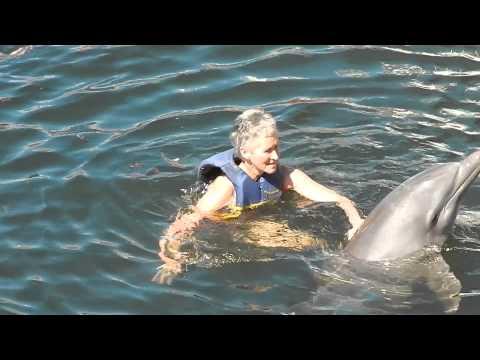 Dolphins in Playa Rancho Luna (Cienfuegos - CUBA) 2015