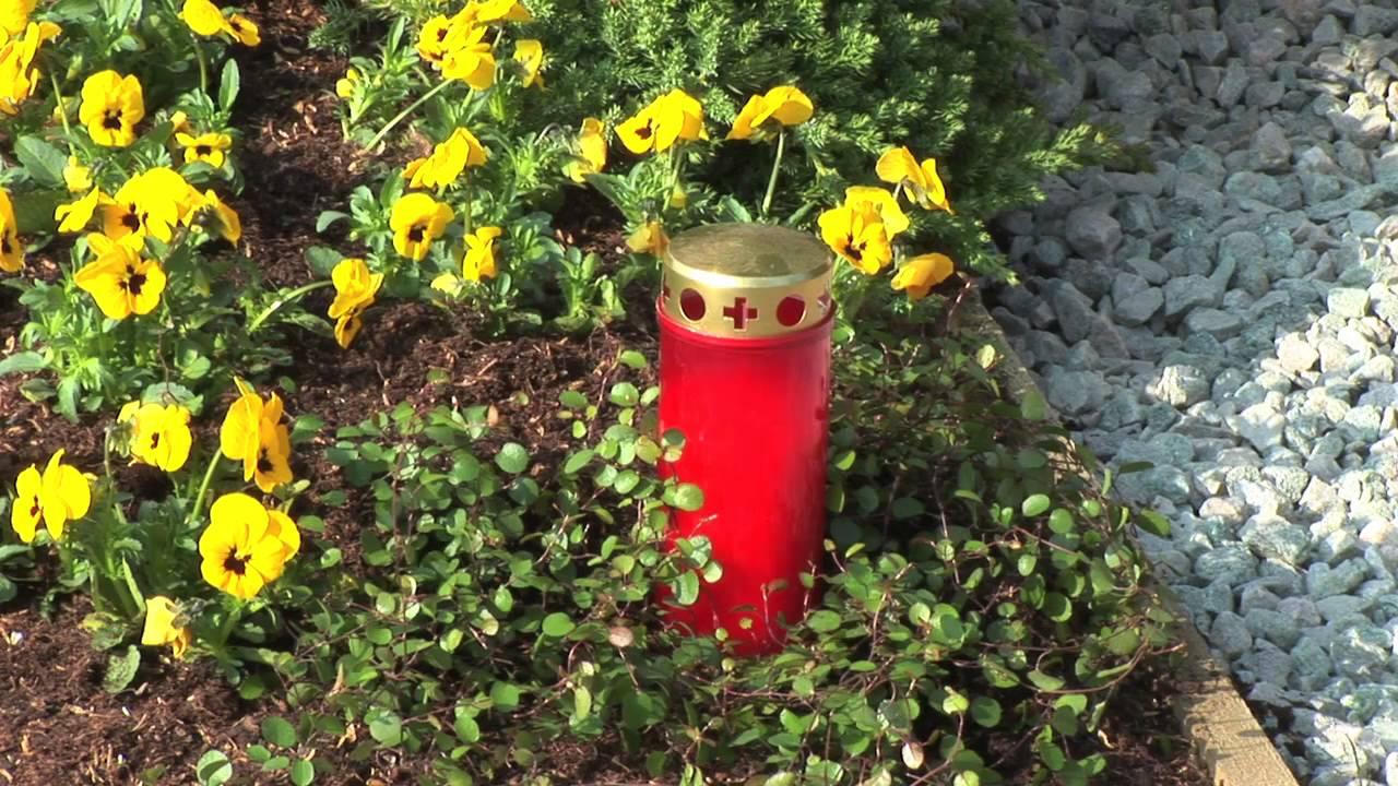 Friedhofsblumen Pflanzen Frühling Sommer Herbst Winter Top 10
