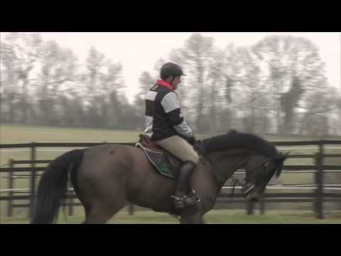 Showjumping - Tim Stockdale At Home - 2012
