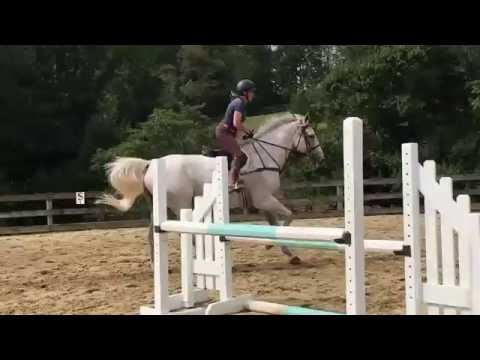 Aces High Schooling Jumps - Sep 2016