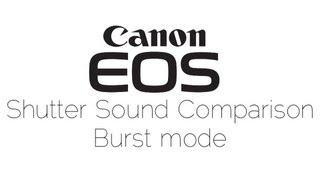 Comparison of Canon EOS Burst Shutter Sounds (visual)