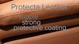 Natuzzi Leather Options
