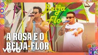 Baixar Matheus & Kauan - A Rosa E O Beija Flor (Ao Vivo Em Recife / 2020)