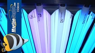 T5HO Fluorescent: Proven Lighting For Your Reef Aquarium