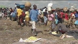 منظمة الفاو تحذر من أزمة غذائية