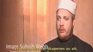 Islam I Brief 2/8