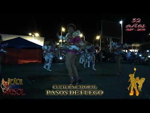 Cultura Caporal Pasos De Fuego Ecuador 🇪🇨