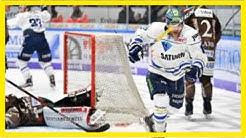 Liveticker nürnberg ice tigers - erc ingolstadt 4:2 (del 2017/2018, 24. spieltag)