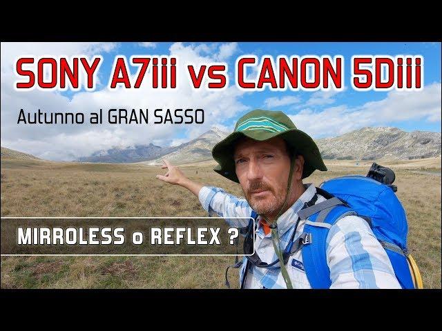 SONY A7iii vs CANON 5Diii - passerò al sistema mirrorless ? I miei test al GRAN SASSO