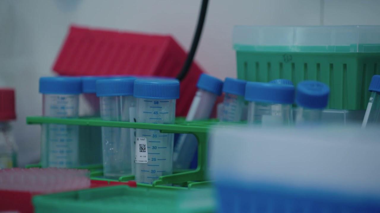 Leiden University Medical Center   LinkedIn