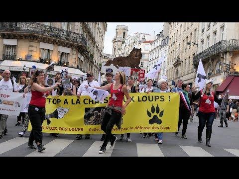 Manifestation 2017 à Paris contre les tirs de loups et contre la chasse