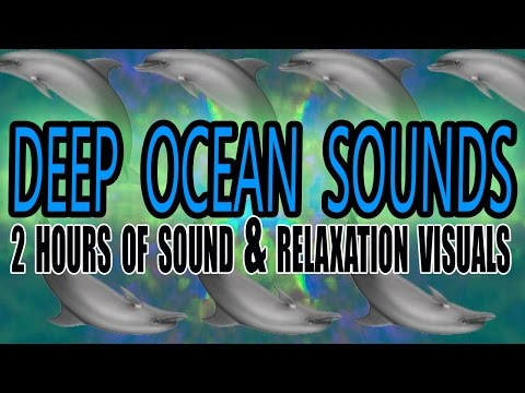2 HOURS - Relaxing Ocean Dolphin Whale Talking Tinnitus Mask