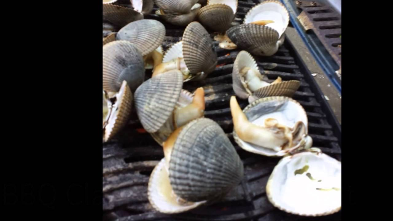 R Clams Good For U Clam digging at Ala Sp...