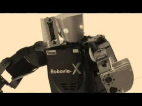 Vstone Robot