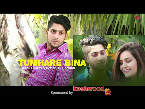 Tumhare Bina - Aadil Gurezi & Debanjali Barman Roy