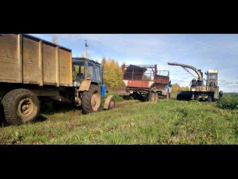 видео: Заготовка кормов