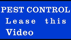 Pest Control Removal Fast | (206) 456-1642 | Pest Control Monterey Park, CA