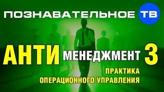 Антименеджмент 3  Практика операционного управления (Познавательное ТВ, Андрей Иванов)