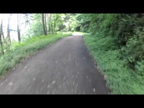 PDX | Leif Erickson - Forest Park (MTB)