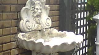 FO 0203 壁泉ライオンです。 吐出水の量を変化させています。 Copyright...