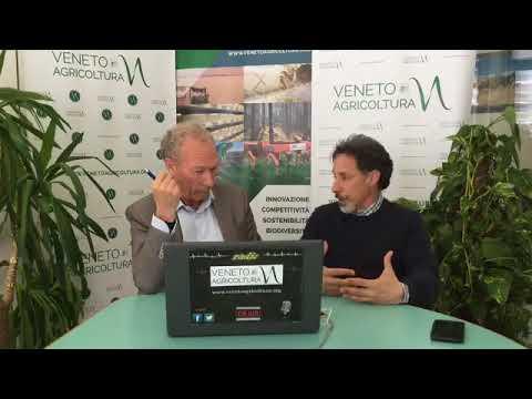 Radio Veneto Agricoltura - Agroforestazione