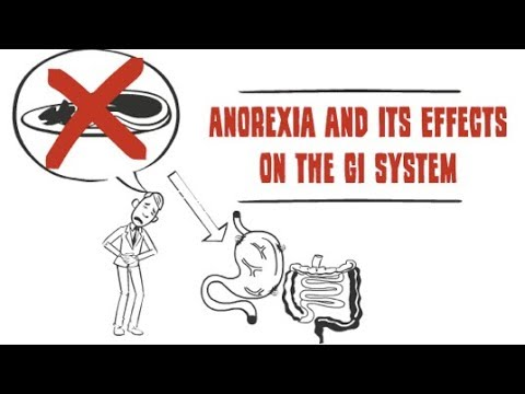 How anorexia affects the digestive system