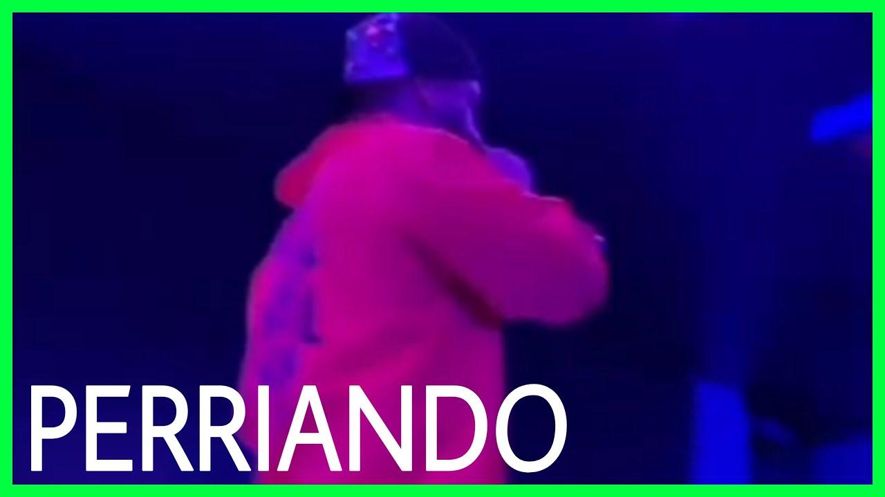 Randy Nota Loca - Perriando (Live Testing)