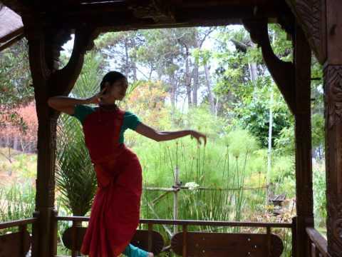 Odissi & Bharatanatyam...Rasamrit Natya Yoga.