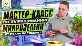 Микрозелень. Мастер-класс по выращиванию микрозелени от  Ивана Воробьева.
