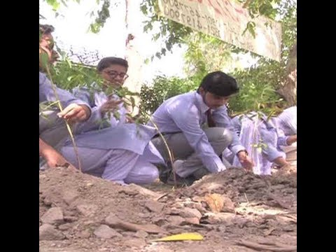 Students from Punjab Group Colleges reached at Canal Road to plant the tree