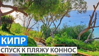 Кипр Спуск к красивому пляжу Коннос из отеля Grecian Park Hotel
