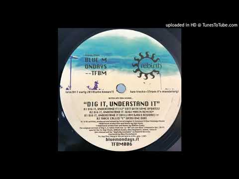 Blue Mondays - Dig It, Understand iT (William Djoko Rework)