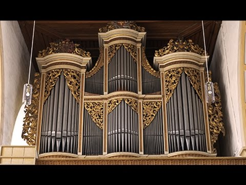 MENDELSSOHN ON SILBERMANN ORGAN - XAVER VARNUS (SONATA IN D MINOR)